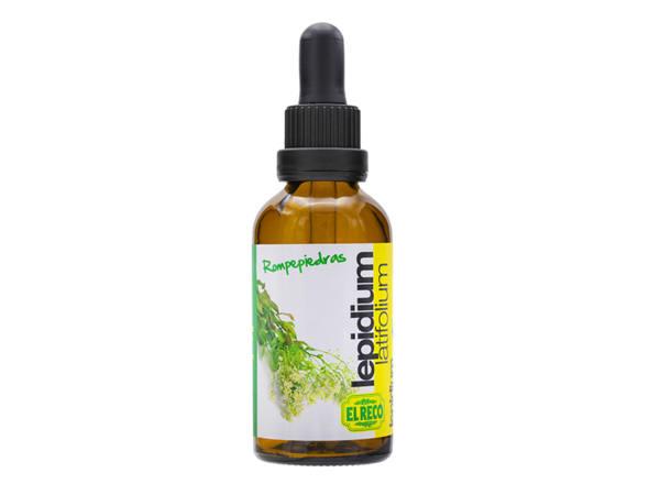 Rompepiedras - Lepidium